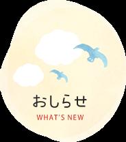 おしらせ WHAT'S NEW